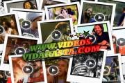 Videos de reggae online