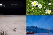 Encontrar videos HD gratis
